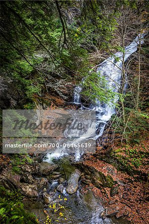 Waterfall and Evergreen Trees, Moss Glen Falls Natural Area, C.C. Putnam State Forest, Lamoille County, Vermont, USA Stock Photo - Rights-Managed, Image code: 700-06465639