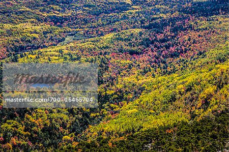 View of Valley with Fall Colours as seen from Cadillac Mountain, Acadia National Park, Mount Desert Island, Hancock County, Maine, USA Stock Photo - Rights-Managed, Image code: 700-06465704