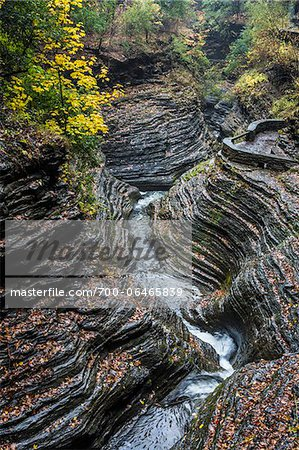 Glen Greek and Gorge in Autumn, Watkins Glen State Park, Schuyler County, New York State, USA Stock Photo - Rights-Managed, Image code: 700-06465839