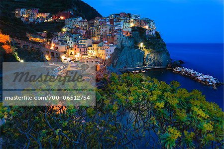 Blue hour at clifftop village of Manarola, Tree spurge (Euphorbia dendroides) in front of the village at dusk, Cinque Terre National Park, UNESCO World Heritage Site, Liguria, Italy Stock Photo - Rights-Managed, Image code: 700-06512754