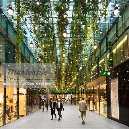 Interior of Fuenf Hoefe Shopping Arcade with Customers, Theatiner Strasse, Munich, Oberbayern, Bavaria, Germany Stock Photo - Rights-Managed, Image code: 700-06531667