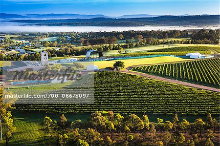 Aerial view of wine country near Pokolbin, Hunter Valley, New South Wales, Australia Stock Photo - Rights-Managed, Image code: 700-06675097