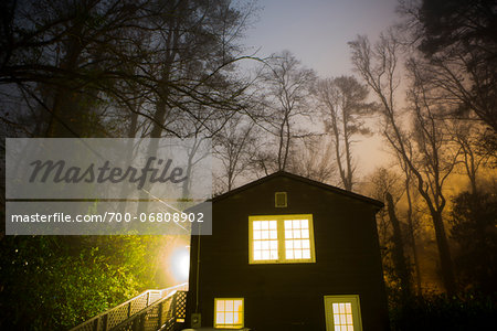 Glowing Foggy Trees over House with Lights On at Night, Macon, Georgia, USA