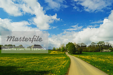 Road through rural scene in spring, Vogtland, Saxony, Germany, Europe Stock Photo - Rights-Managed, Image code: 700-06894759