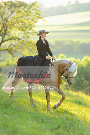 Woman Wearing Dress Riding a Connemara Stallion on a Meadow, Germany Stock Photo - Rights-Managed, Image code: 700-06900024