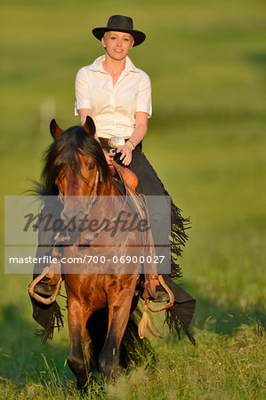 Portrait of woman riding a Connemara stallion on a meadow, Germany Stock Photo - Rights-Managed, Image code: 700-06900027