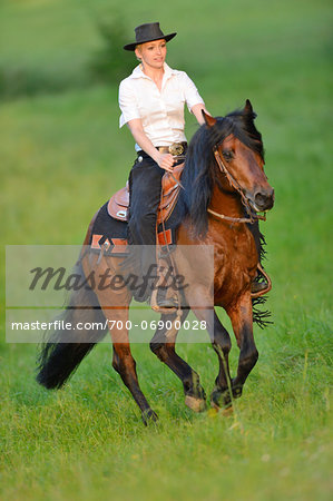 Young woman riding a Connemara stallion on a meadow, Germany Stock Photo - Rights-Managed, Image code: 700-06900028