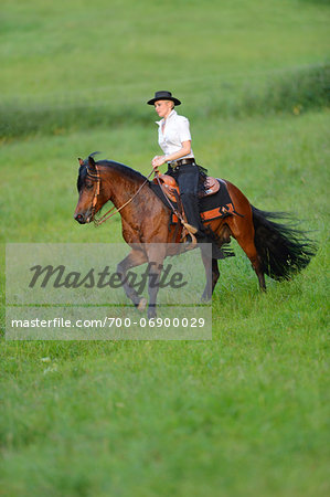 Young woman riding a Connemara stallion on a meadow, Germany Stock Photo - Rights-Managed, Image code: 700-06900029