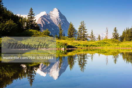Reflection of Eiger Peak in an Alpine Lake, Bernese Alps, Grosse Scheidegg, Canton of Bern, Switzerland Stock Photo - Rights-Managed, Image code: 700-07026611