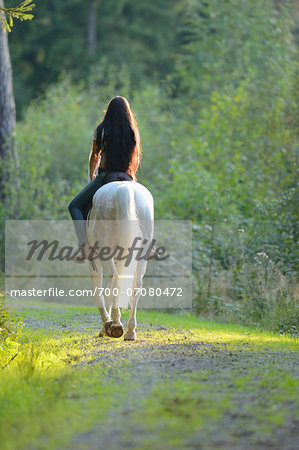 Back view of young woman riding a white, Bavarian Warmblood horse, Bavaria, Germany Stock Photo - Rights-Managed, Image code: 700-07080472