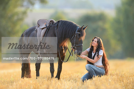 Young woman kneeling beside a Friesian horse in a cut cornfield, Bavaria, Germany Stock Photo - Rights-Managed, Image code: 700-07080476