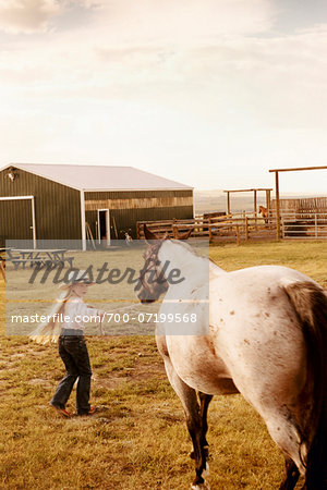 Girl with Horse Stock Photo - Rights-Managed, Image code: 700-07199568