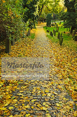 Leaf Covered Path in Autumn, Jewish Cemetery, Worms, Rhineland-Palatinate, Germany Stock Photo - Rights-Managed, Image code: 700-07202703