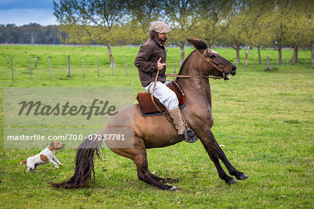 Man Horseback Riding at Candelaria del Monte, San Miguel de Monte, Argentina Stock Photo - Rights-Managed, Image code: 700-07237781