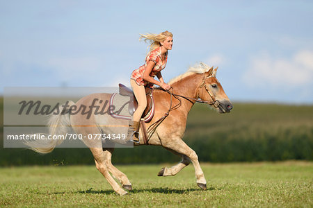 Close-up of a young woman riding a Haflinger horse in summer, Upper Palatinate, Bavaria, Germany Stock Photo - Rights-Managed, Image code: 700-07734349