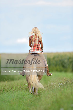 Backview of a young woman riding a Haflinger horse in a field in summer, Upper Palatinate, Bavaria, Germany Stock Photo - Rights-Managed, Image code: 700-07734369