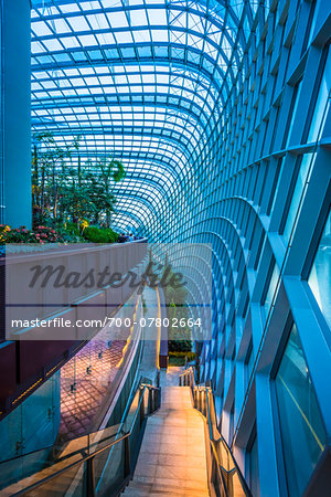 Architectural interior, Flower Dome, Gardens by the Bay, Singapore Stock Photo - Rights-Managed, Image code: 700-07802664