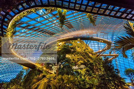 Cloud Forest conservatory, Gardens by the Bay, Singapore Stock Photo - Rights-Managed, Image code: 700-07802666