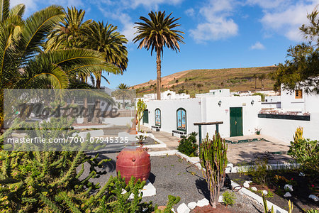 Palm trees by an art shop, Haria, Valley of a Thousand Palms, Lanzarote, Las Palmas, Canary Islands Stock Photo - Rights-Managed, Image code: 700-07945325
