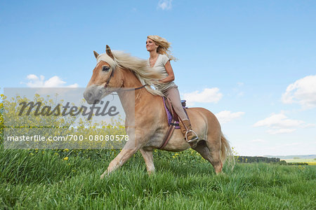 Young woman riding a Haflinger horse in a meadow in spring, Bavaria, Germany Stock Photo - Rights-Managed, Image code: 700-08080578