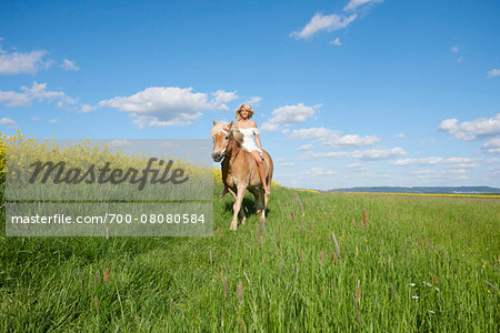 Young woman riding a Haflinger horse in a meadow in spring, Bavaria, Germany Stock Photo - Rights-Managed, Image code: 700-08080584
