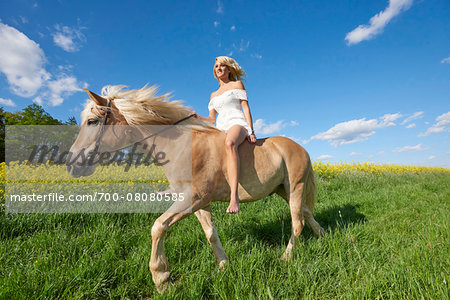 Young woman riding a Haflinger horse in a meadow in spring, Bavaria, Germany Stock Photo - Rights-Managed, Image code: 700-08080585