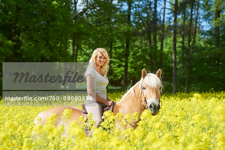 Young woman riding a Haflinger horse in a canola field in spring, Bavaria, Germany Stock Photo - Rights-Managed, Image code: 700-08080594