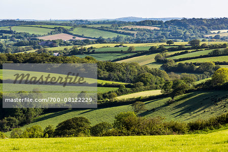 Farmland near Fowey, Cornwall, England, United Kingdom Stock Photo - Rights-Managed, Image code: 700-08122229