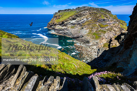 Remains of Tintagel Castle, Tintagel, Cornwall, England, United Kingdom Stock Photo - Rights-Managed, Image code: 700-08122239