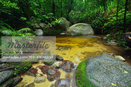 Creek, Daintree Rainforest, Mossman Gorge, Daintree National Park, Queensland, Australia Stock Photo - Rights-Managed, Image code: 700-08146050