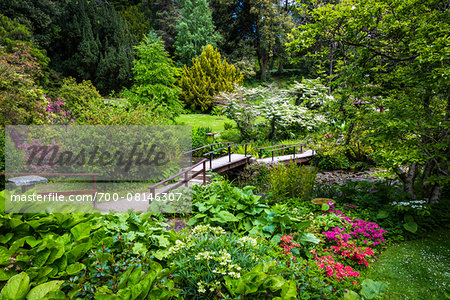 Walkway and gardens, Powerscourt Estate, located in Enniskerry, County Wicklow, Ireland Stock Photo - Rights-Managed, Image code: 700-08146307