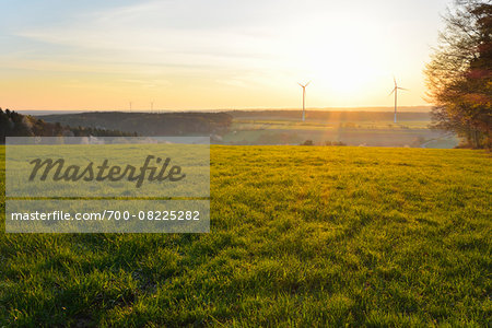 Meadow in Spring at Sunrise with Wind Turbines in background, Schippach, Miltenberg, Odenwald, Bavaria, Germany Stock Photo - Rights-Managed, Image code: 700-08225282