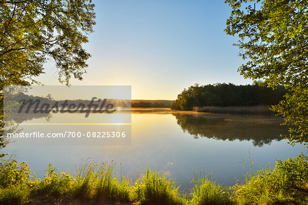 Sunrise on the shoreline with Trees on a Lake, Niedernberg, Miltenberg-District, Churfranken, Franconia, Bavaria, Germany Stock Photo - Rights-Managed, Image code: 700-08225306