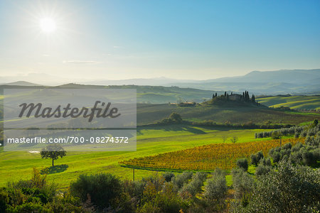 Tuscany Countryside with Farmhouse and Sun, San Quirico d'Orcia, Val d'Orcia, Province of Siena, Tuscany, Italy Stock Photo - Rights-Managed, Image code: 700-08274372