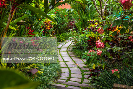 Pathway through gardens in Petulu, near Ubud, Bali, Indonesia Stock Photo - Rights-Managed, Image code: 700-08385903