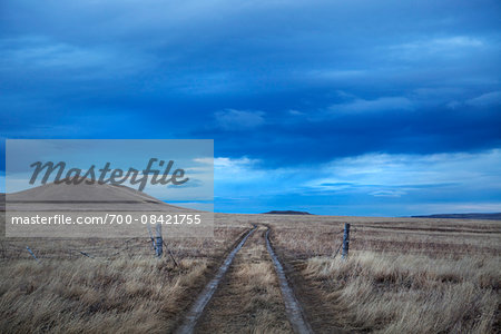 Scenic view with ruts on a ranch road passing through a fence in Montana, USA Stock Photo - Rights-Managed, Image code: 700-08421755