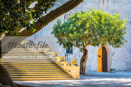 Stone steps and walls shaded by trees at the Donnafugata Castle in the Province of Ragusa in Sicily, Italy Stock Photo - Rights-Managed, Image code: 700-08723141