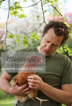 Man Holding Chicken Stock Photo - Premium Rights-Managed, Artist: ableimages, Code: 822-03601721
