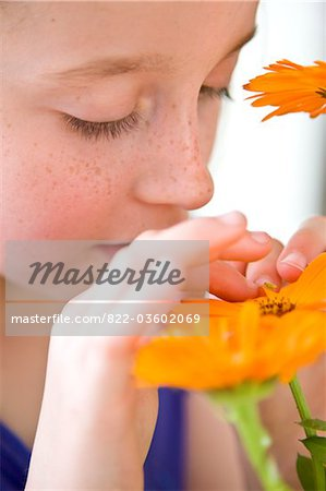 Young Girl Inspecting Orange Flower Stock Photo - Rights-Managed, Image code: 822-03602069