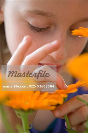 Young Girl Inspecting Orange Flower Stock Photo - Rights-Managed, Image code: 822-03602084