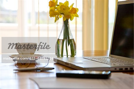 Laptop and Vase of Daffodils on Office Desk Stock Photo - Rights-Managed, Image code: 822-03781106