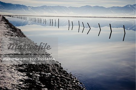 Lakeshore with Submerged Fence Reflecting in Lake Stock Photo - Rights-Managed, Image code: 822-05554954