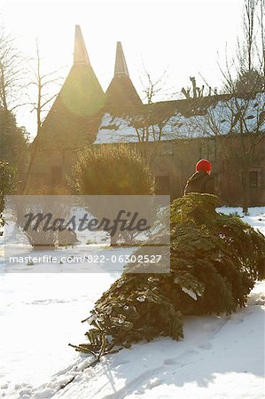 Back View of Man Dragging Christmas Tree on Snow Stock Photo - Rights-Managed, Image code: 822-06302527