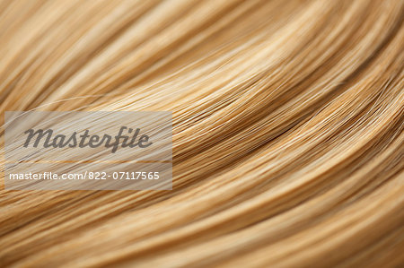 Extreme Close up of Blonde Hair Stock Photo - Rights-Managed, Image code: 822-07117565