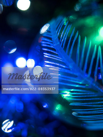 Extreme close up of Christmas Bauble Stock Photo - Rights-Managed, Image code: 822-08353937
