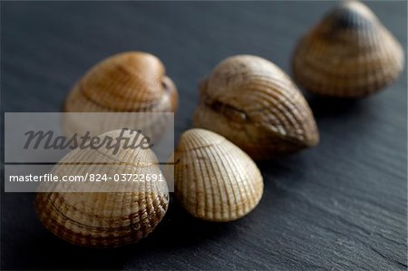 Cockles on slate Stock Photo - Rights-Managed, Image code: 824-03722691