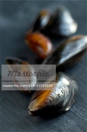 Mussels on slate Stock Photo - Rights-Managed, Image code: 824-03722693