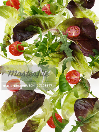 Salad leaves on a white background Stock Photo - Rights-Managed, Image code: 824-07193377