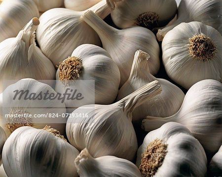 Garlic bulbs Stock Photo - Rights-Managed, Image code: 824-07193416