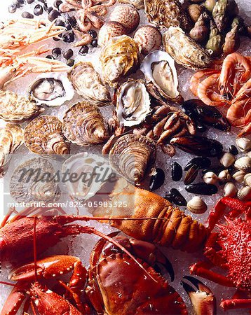 shellfish and seafood Stock Photo - Rights-Managed, Image code: 825-05985325